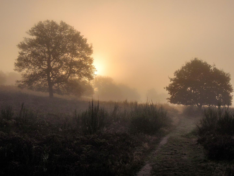 Ein Oktobermorgen