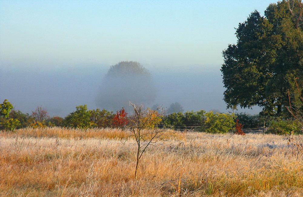 Ein Oktobermorgen in der Prignitz-Vers.2