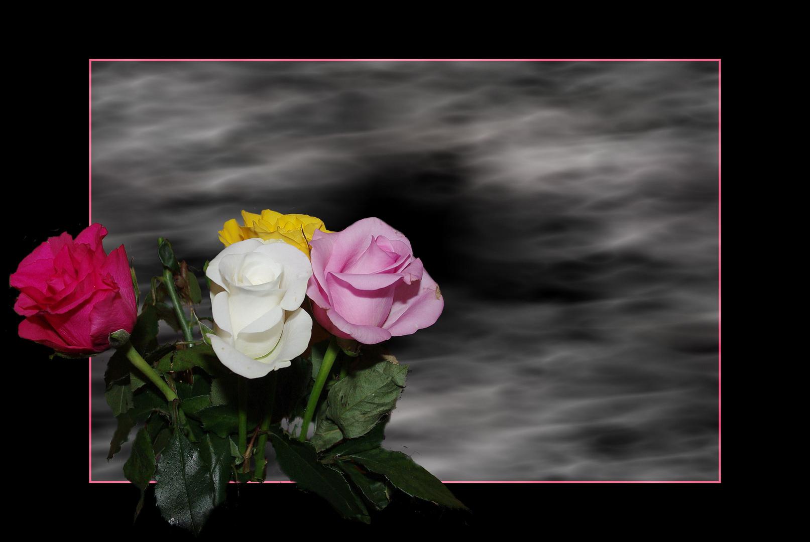 Ein paar Rosen
