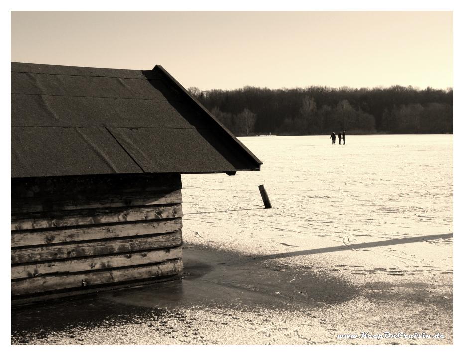 Ein paar Schöfler auf dem Woldsee
