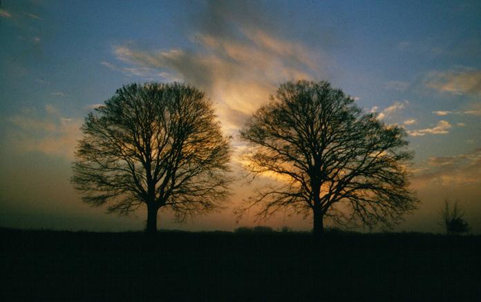 Ein Pärchen im Sonnenuntergang