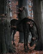 ein pferd aus holz