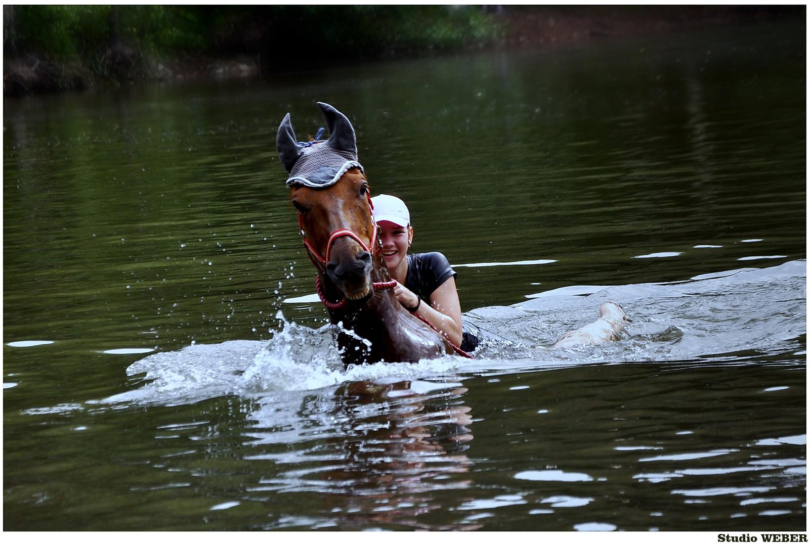Ein Pferd baden.