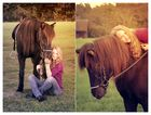 Ein Pferd vergisst nichts aber vergibt alles