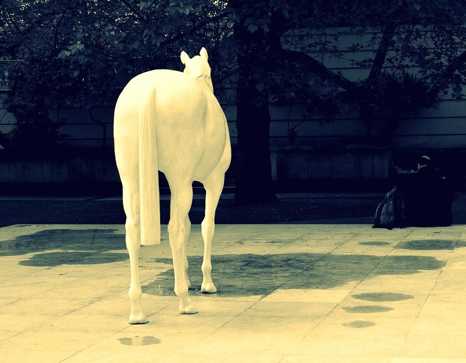 Ein Pferd vor der Tür