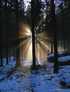 Ein Portal aus Licht........