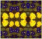 Ein Quardraht -Blumenbeet.