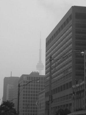 Ein regnerischer Tag (2)