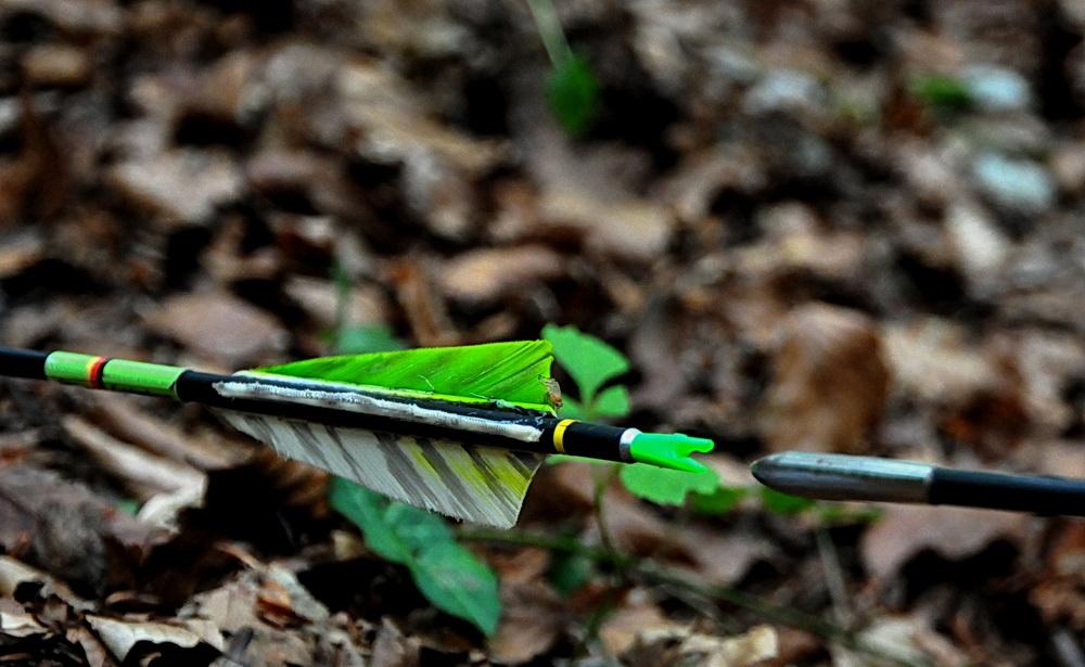 Ein Robin Hood