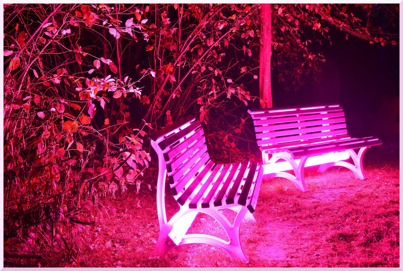 Ein romantischer Platz beim Abendspaziergang