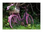 Ein rosa Fahrrad