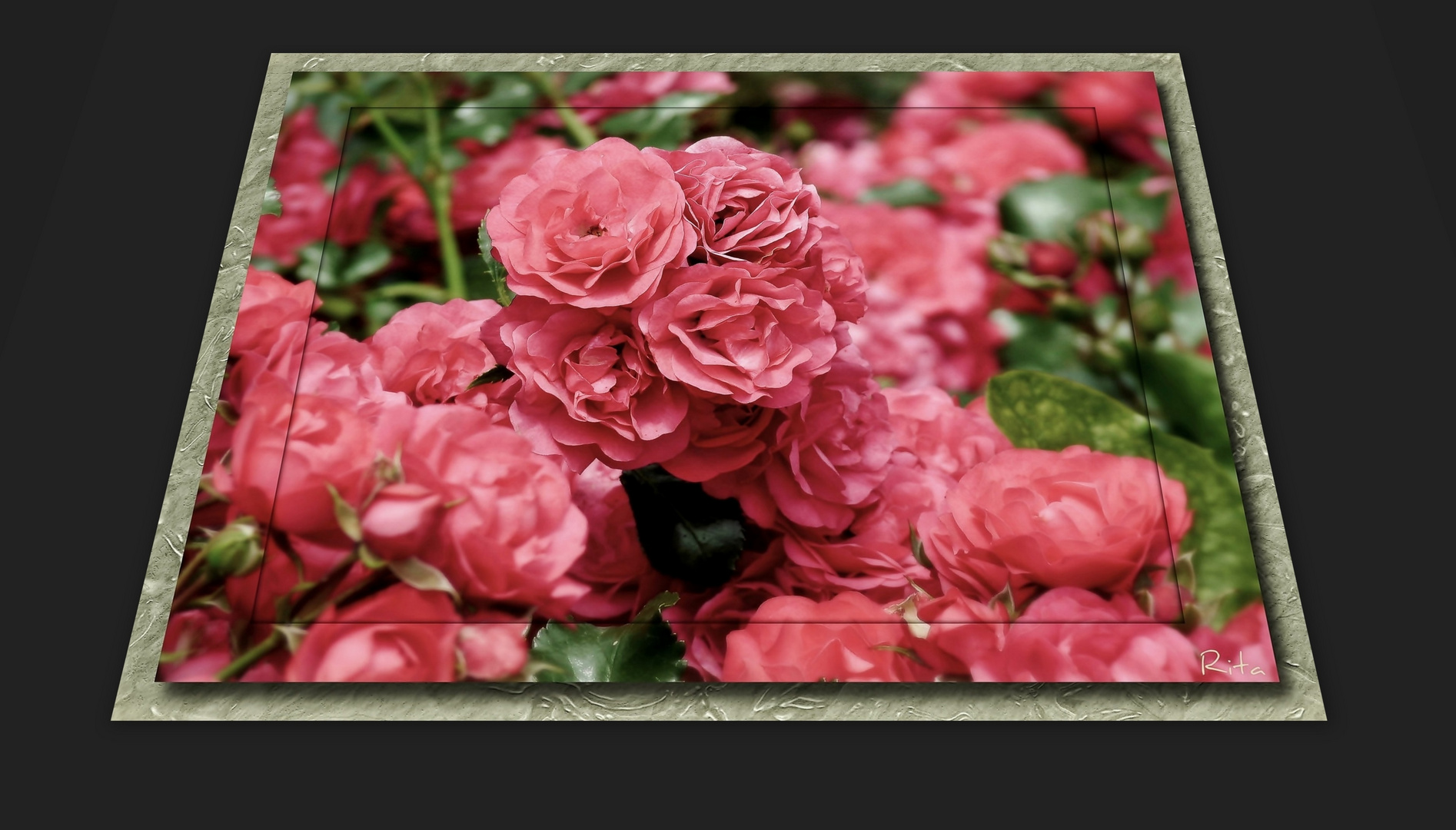 ein Rosenduft...