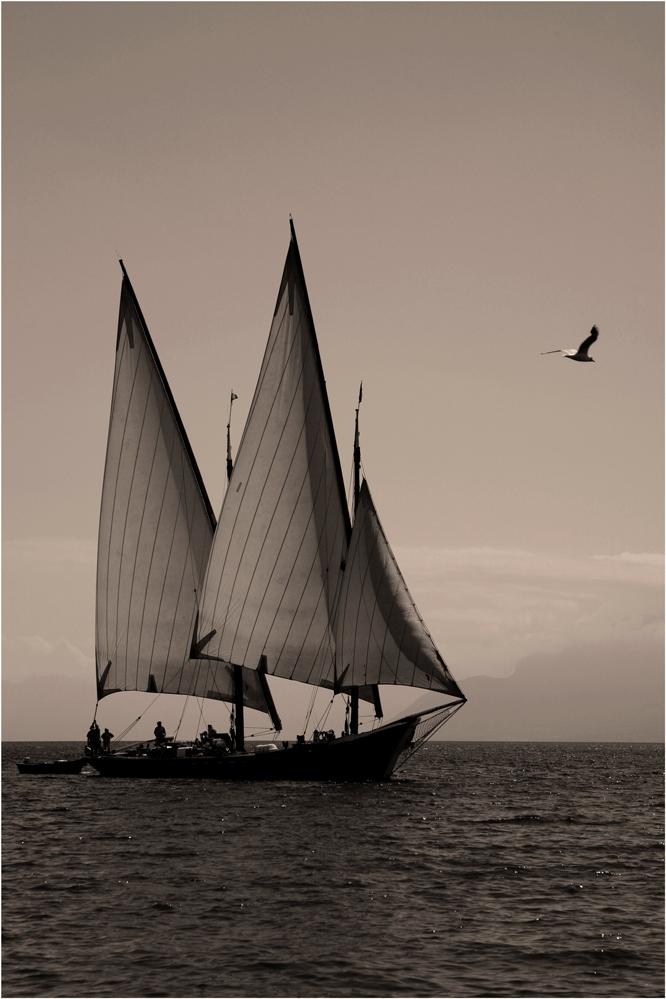 Ein Schiff wird kommen ... (2)