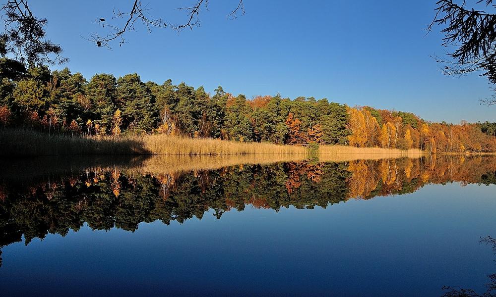 Ein schön Wetter Herbstbild, bei mir ist sch... Wetter.