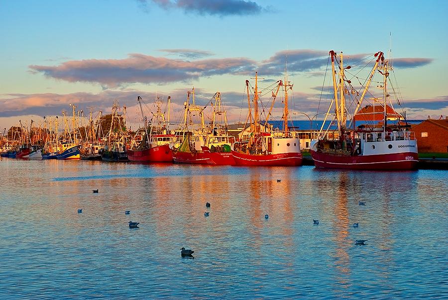 Ein schöner Abend im Hafen