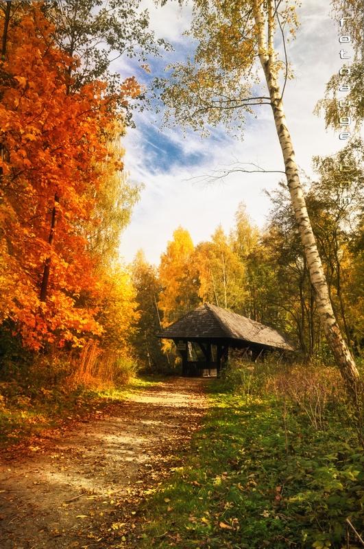 ein schöner Herbsttag am Untreusee