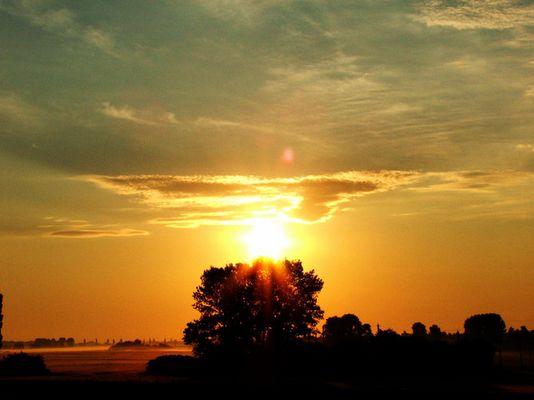 Ein schöner Morgen 1