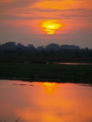 ein schöner Sonnenuntergang am Kehdinger Moor
