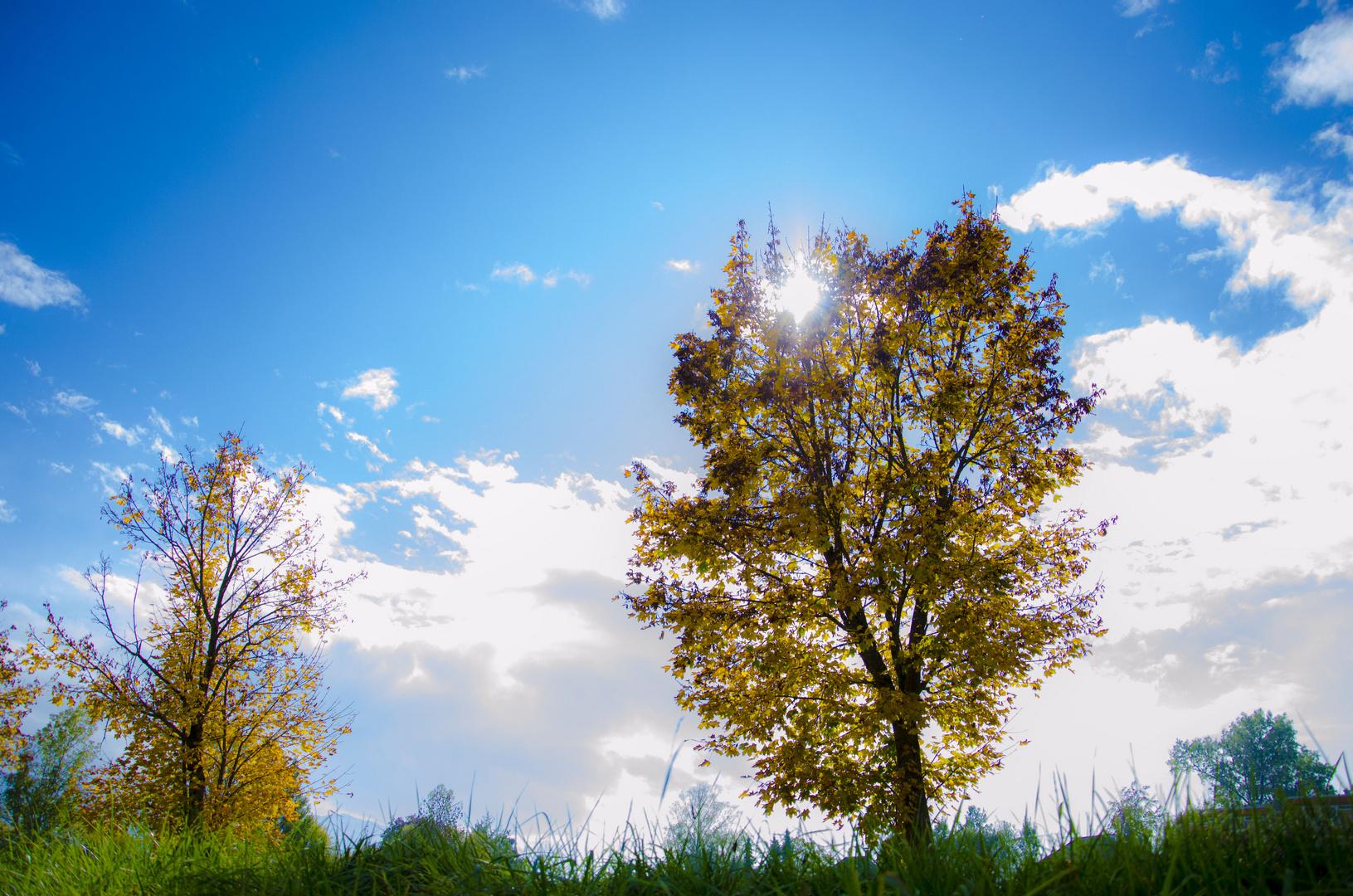 Ein schöner Tag
