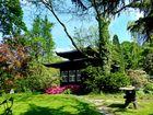 Ein schöner Tag im Japanischem Garten