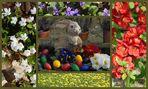 Ein schönes und buntes Osterfest wünsche ich allen Freunden und Besuchern in der FC
