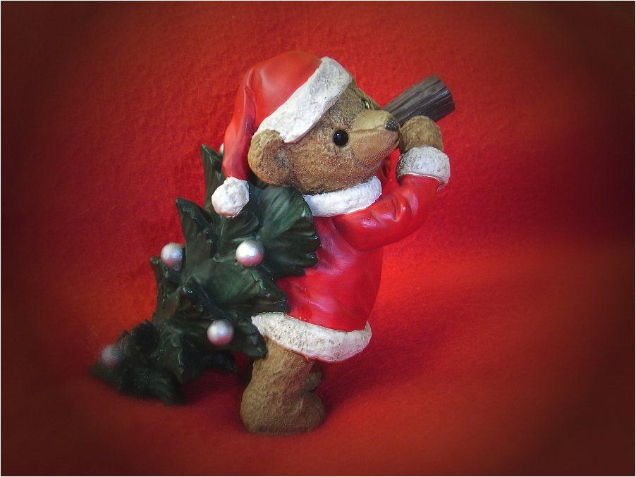 Ein schönes Weihnachtsfest !