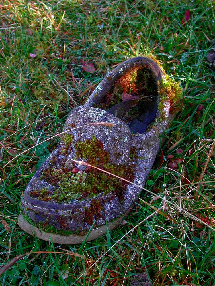 Ein Schuh, der viel zu erzählen hat!