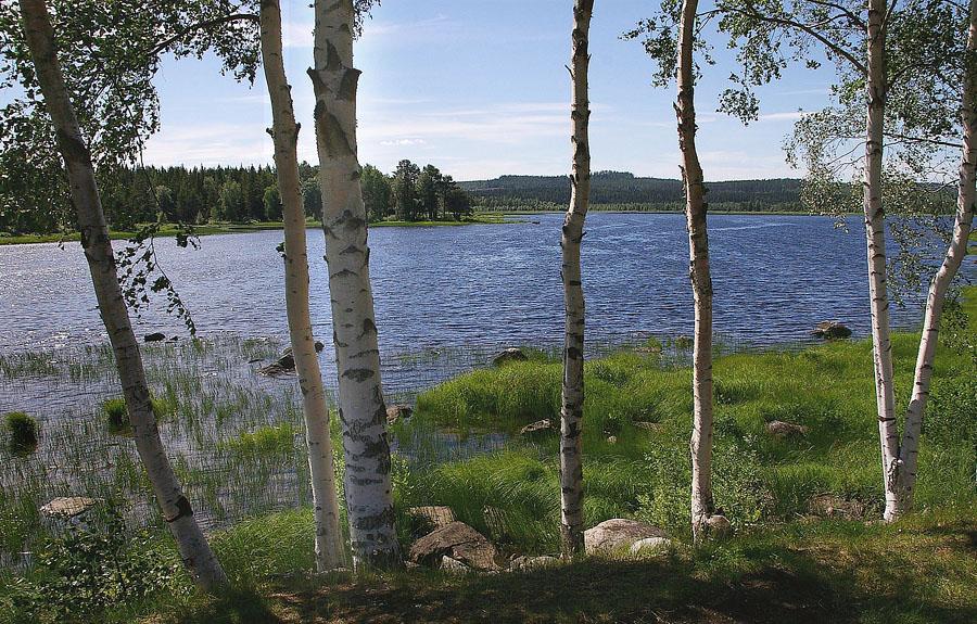 Ein See in Schweden