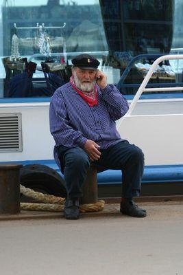 Ein Seebär am Hamburger Hafen