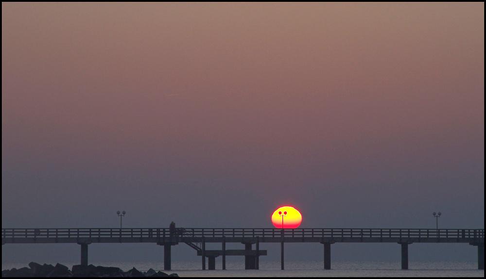 Ein seltener Gast auf der Seebrücke..