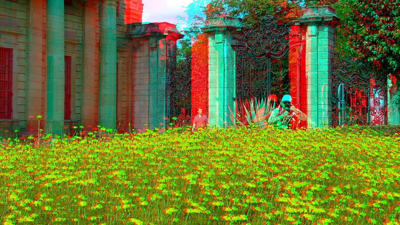 ein Sommerbild... (3D-Foto 2)
