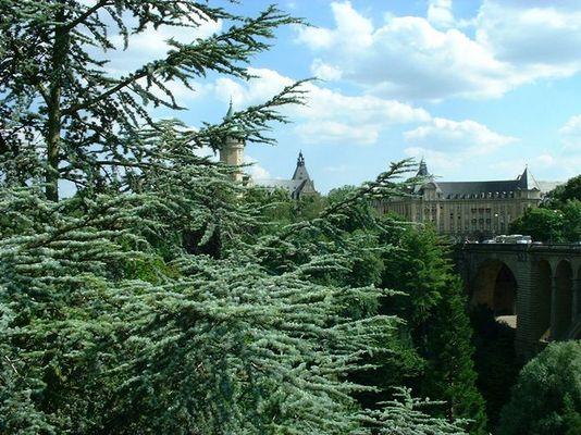 Ein Sommertag in Luxemburg