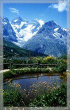 Ein Sommertraum am Col du Lautaret 2056 m