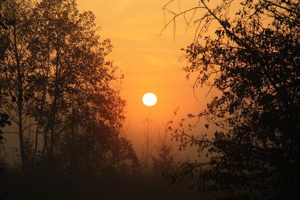 Ein Sonnenaufgang mit Nebel