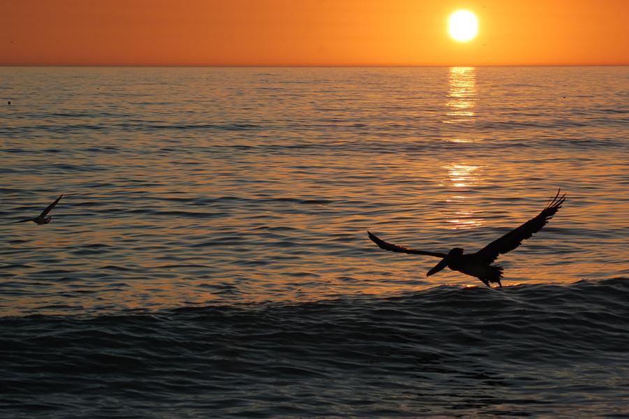 Ein Sonnenuntergang für Zuhausegebliebene