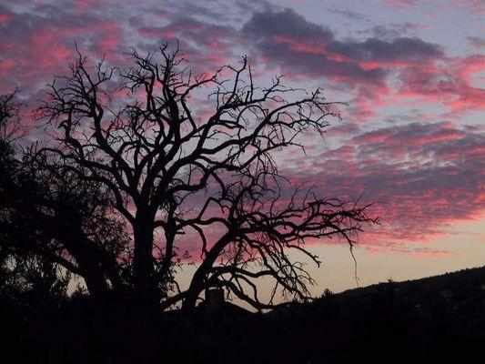 Ein Sonnenuntergang im Hunsrück