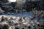 Ein sonniger Gruß zum 2. Advent aus dem winterlichen Neuss