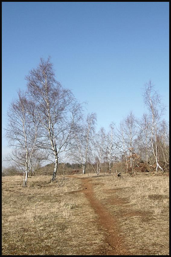 Ein Spaziergang am Sonntag