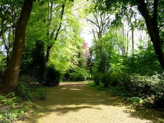 Ein Spaziergang im Grünen, - oder der Weg ist das Ziel -