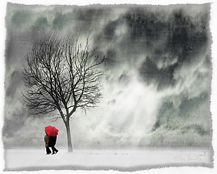 ein spaziergang im wintersturm