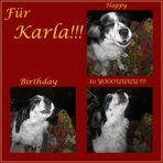 Ein Ständchen für Karla2