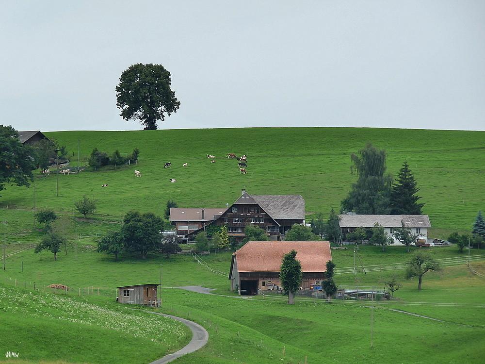 ein Stattlicher Bauernhof im Emmental