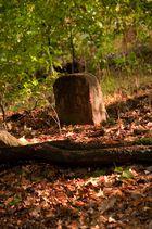 Ein Steinchen steht im Wald...