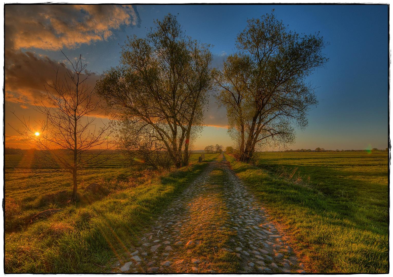 Ein steiniger Weg ;-)