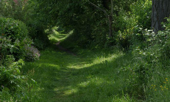 Ein stiller, sehr romantischer Fußweg...