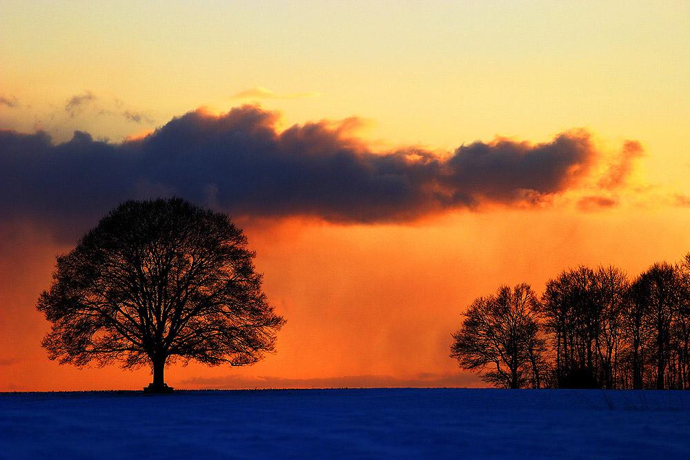 Ein stiller Winterabend