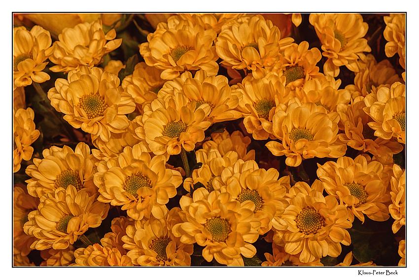 Ein Strauss gelber Blüten