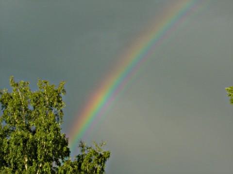 ....ein Stück vom Regenbogen!