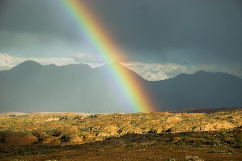 Ein Stück vom Regenbogen