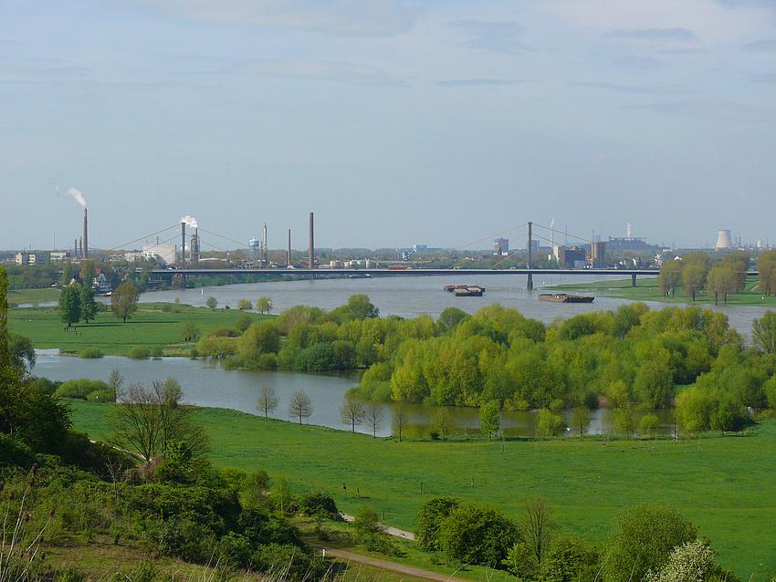 ein Stück vom Rhein